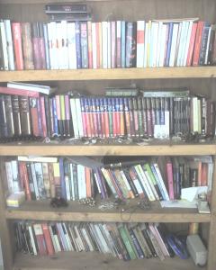 One of my many bookshelves